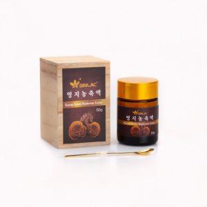 Reishi extract 50g-1web